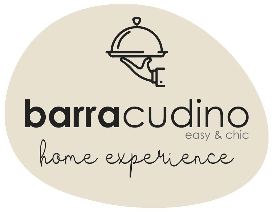 logo Barracudino_HE