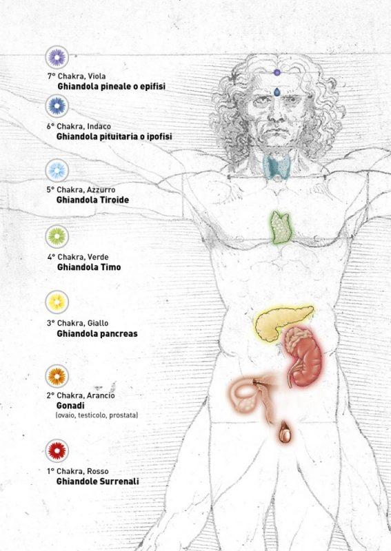 Copertina, impaginazione e illustrazioni pubblicazione scientifica per Dr.Rubino - 2015